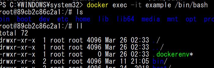 docker-exec